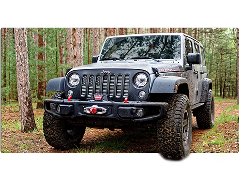 Jeep driving through woods